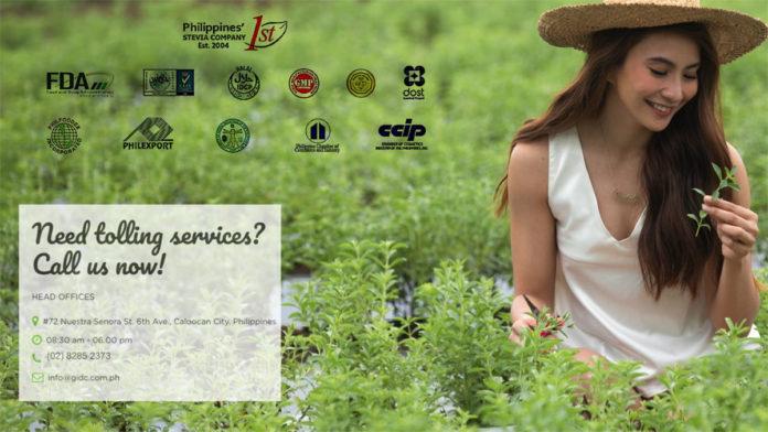 Stevia in the Philippines - Negosentro